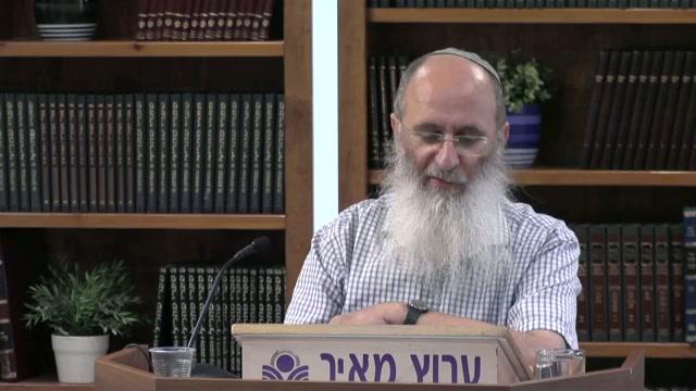 תורת חוץ לארץ ותורת ארץ ישראל - וכי ישנן שתי תורות לישראל ?