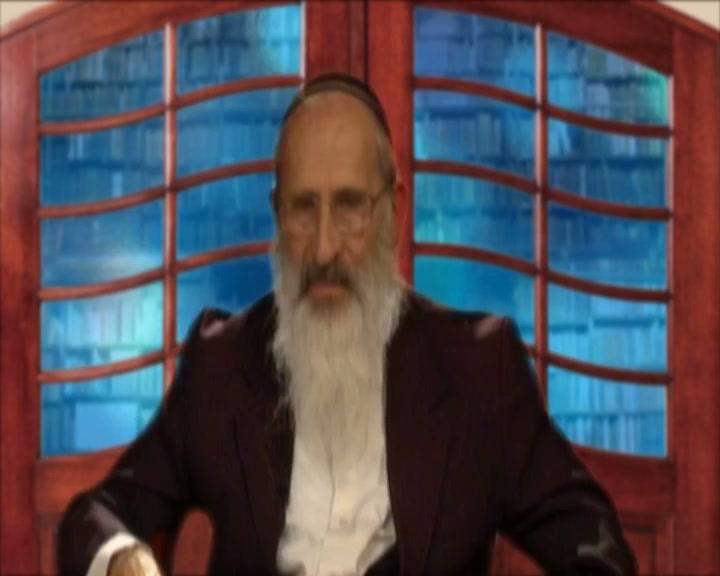 האם הרב קוק  היה חסיד או ליטאי ?