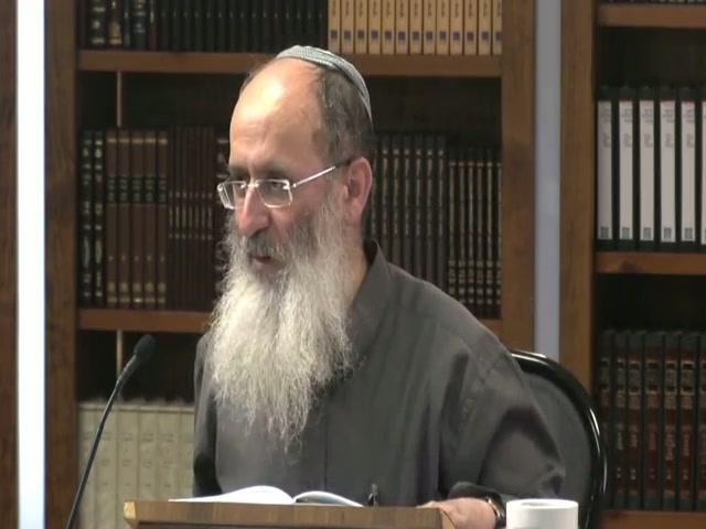 האם יש זיקה אמיתית בין הקרבן ובין החטא שעליו הוא מכפר ?