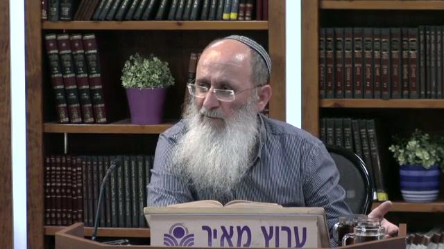 """כיצד עם  ישראל חוטא אם המטען הגנטי הרוחני שלו הוא """"כולו זרע אמת"""" ?"""