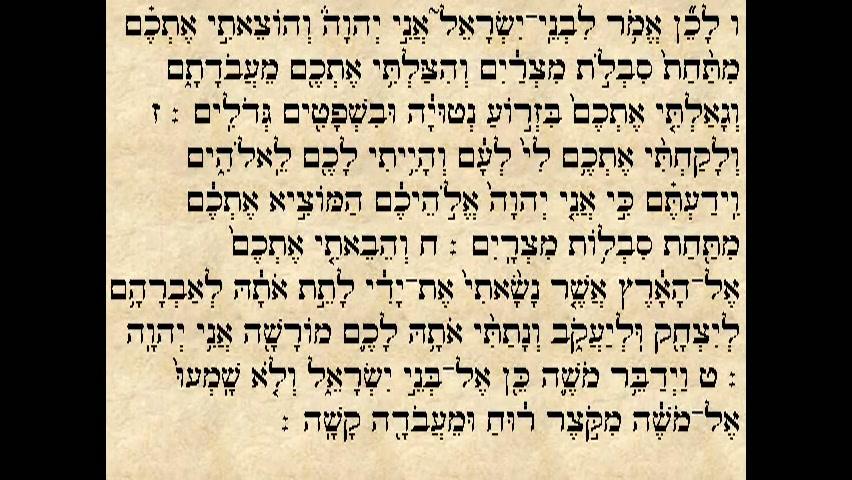 פרשת וארא - עליית ראשון