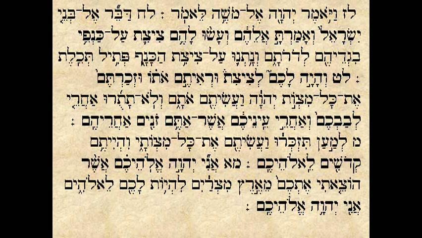 """הפטרת פרשת שלח לך - """"וישלח יהושע בן נון מן השטים..."""""""