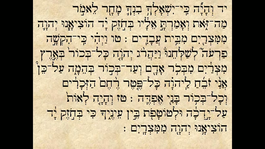 """הפטרת פרשת בא - """"הדבר אשר דבר ה  אל ירמיהו הנביא..."""""""