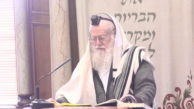 הכוונה בפסוק שמע ישראל