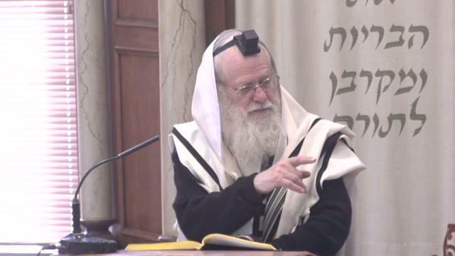 הנחת החנוכיה בבית הכנסת בכותל דרום