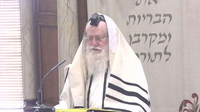 הרואה בתי ישראל בישובם ובחורבנם