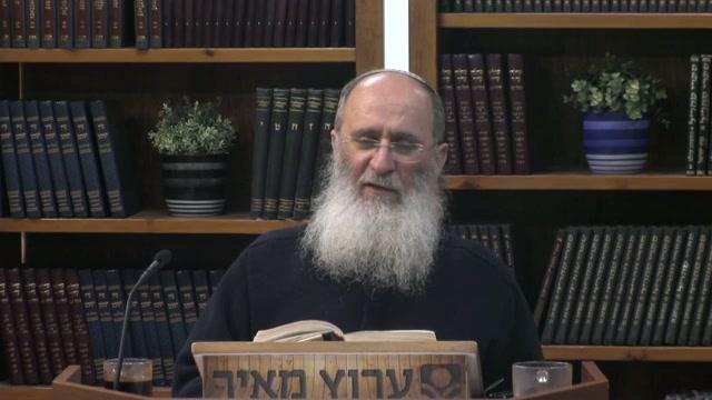 חלוקת הנבראים למדרגות דומם צומח חי ואדם