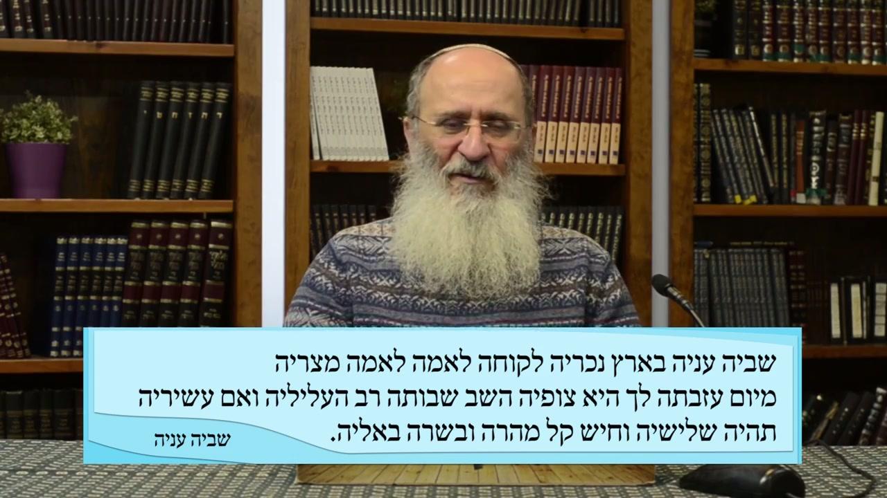 רבנו לוי בן גרשם