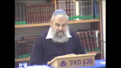 מדרגת האחדות במלכות ישראל תחזר רק בימי המשיח