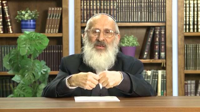 האם היהדות שואפת למדינת הלכה?