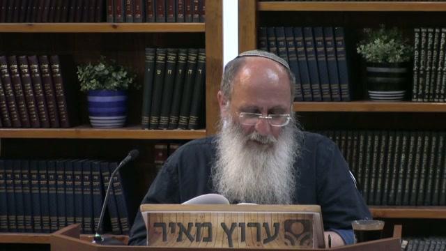 זקני ישראל הם בחינת הכנפיים של עם ישראל שמשולים לעוף