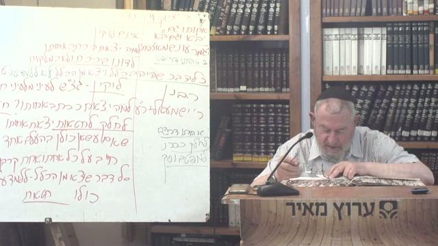 סיכום מחלוקת רבי יצחק וחכמים ועניין שילוח הטמאים מן המחנה