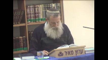 מנוחת השבת - ביאור במקורות נוספים לסוגיא