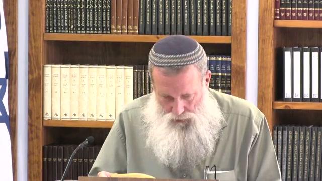 מי יהיו המנהיגים של המדינה היהודית וכיצד תתנהג ? - חלק ב