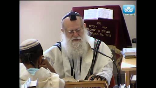 חלוקת הכבוד בישראל לפי גודל ההשפעה
