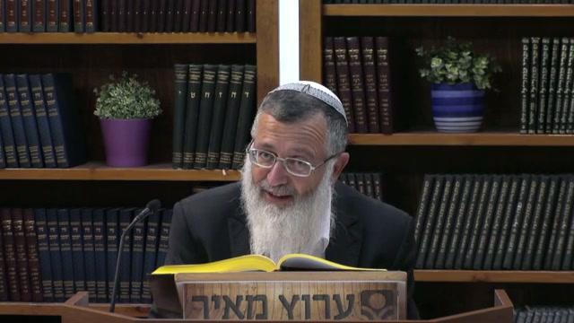 גוי שעשה מלאכה בעד ישראל בדבר שאיננו משתנה - חלק א