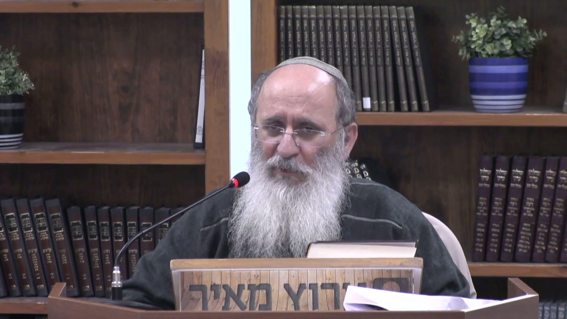 הספרייה של היהדות - מבוא לתורה שבעל פה
